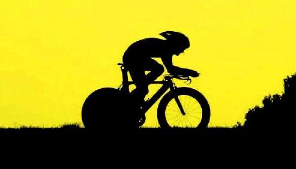 Rasa-TT-pic yellow2